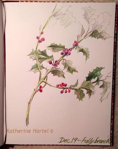 December 19 ~  Holly Branch