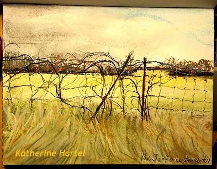 December 3 ~ Fence Lines